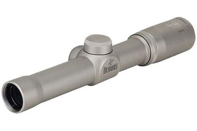 Burris 2X Nic Plex reticle 200229